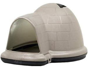 Best insulated dog house for large dogs