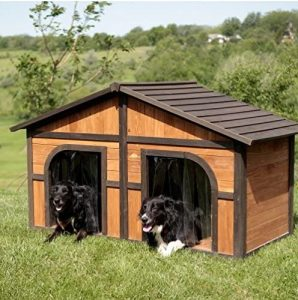Best Dog House For Large Breeds