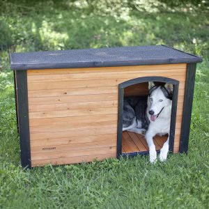 Best Climate Controlled Dog House