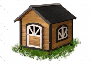 Best Facny Dog House