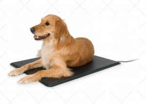 Heating Pad For Outdoo Dog Houses