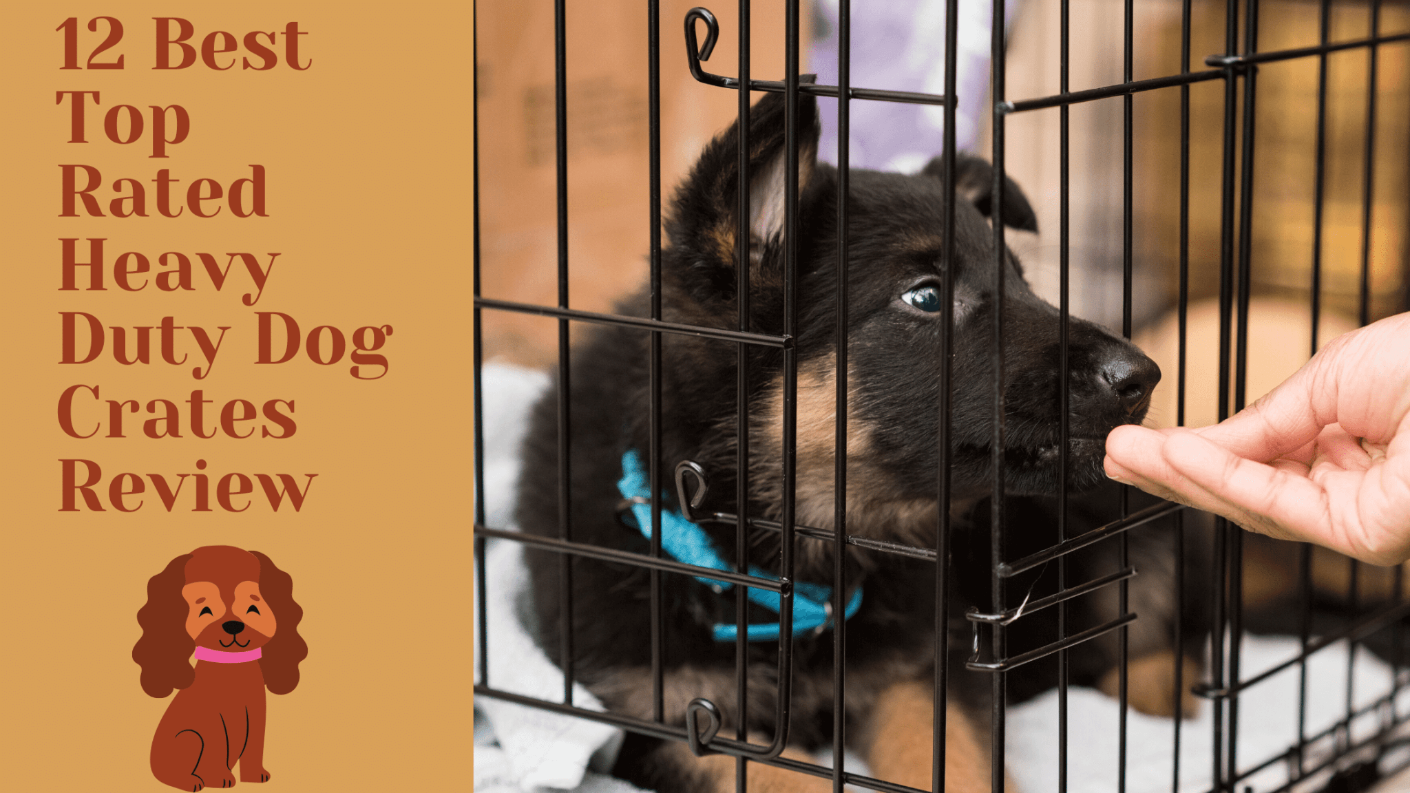 Best Heavy Duty Dog Crates For All Breeds