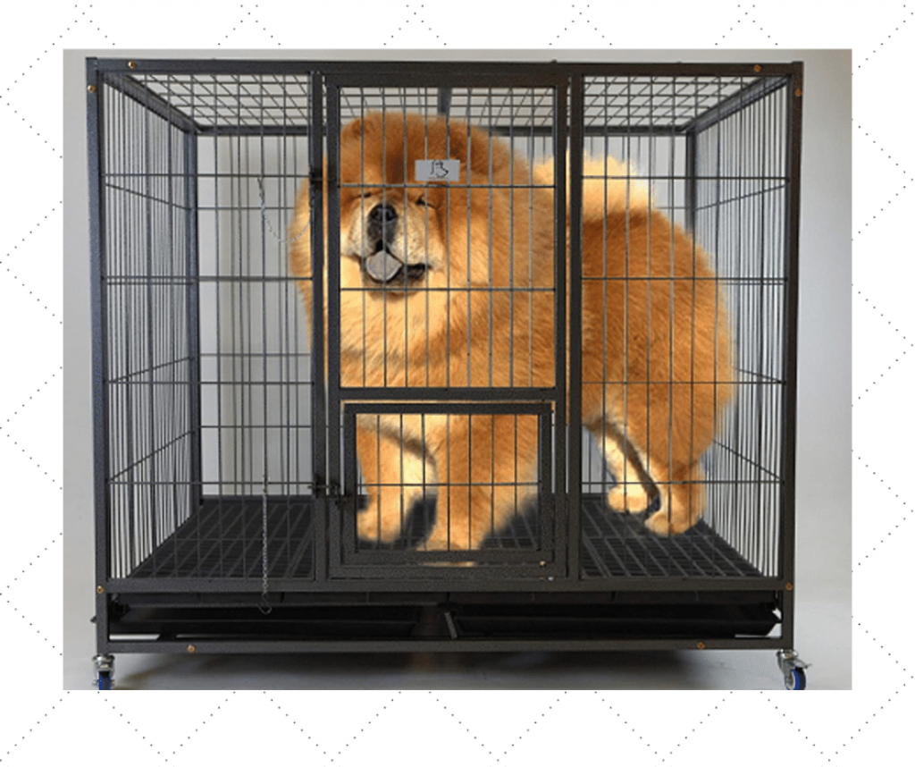 Best Heavy Duty Dog Kennel For Dogs