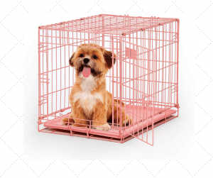Best Metal Dog Crate For Small Dogs