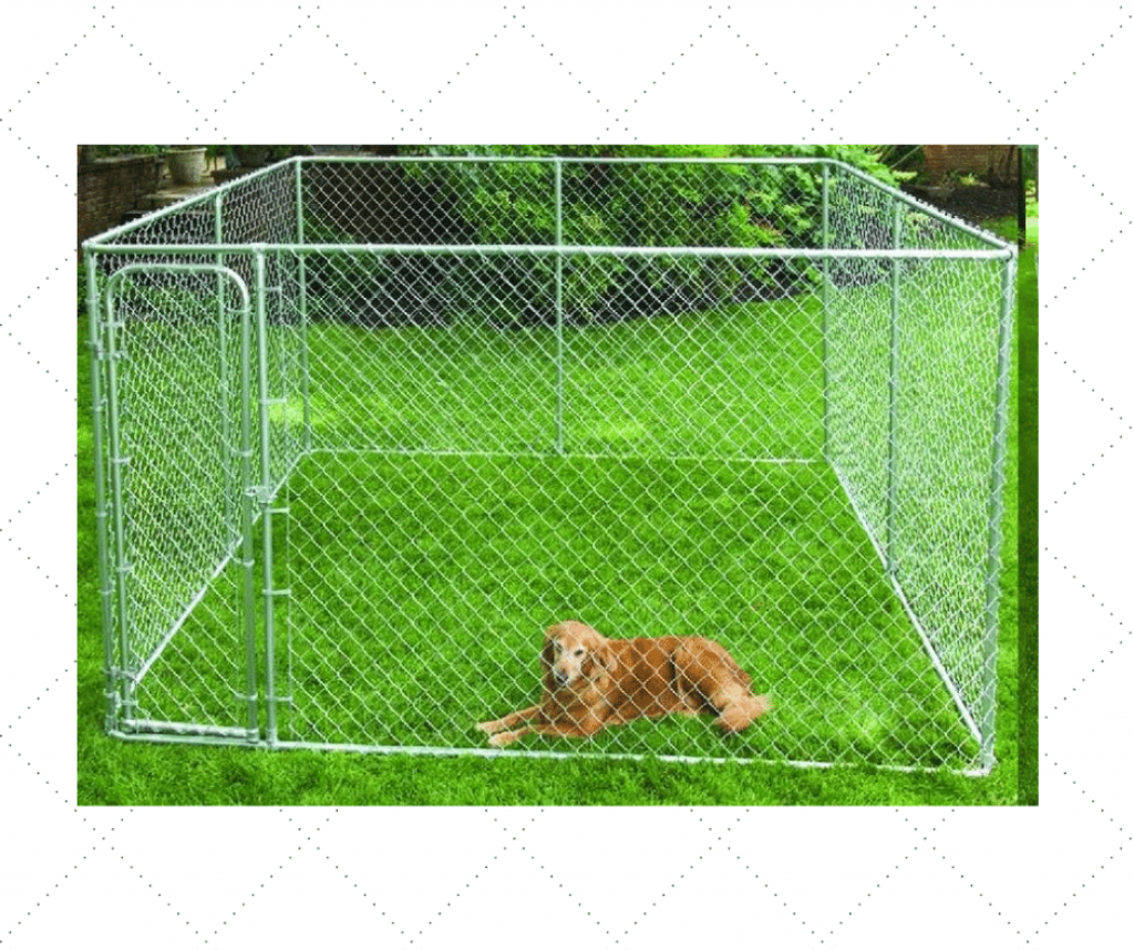 Best Outdoor Dog Kennel For Multiple Dogs