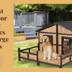 Best Outdoor House For Large Dogs
