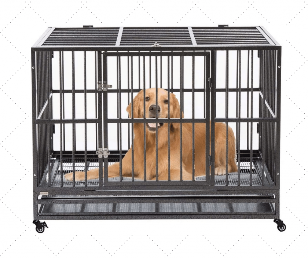 Best Portable Dog Kennel For Medium Dogs