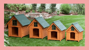 Dog House Size Guide For All Breeds