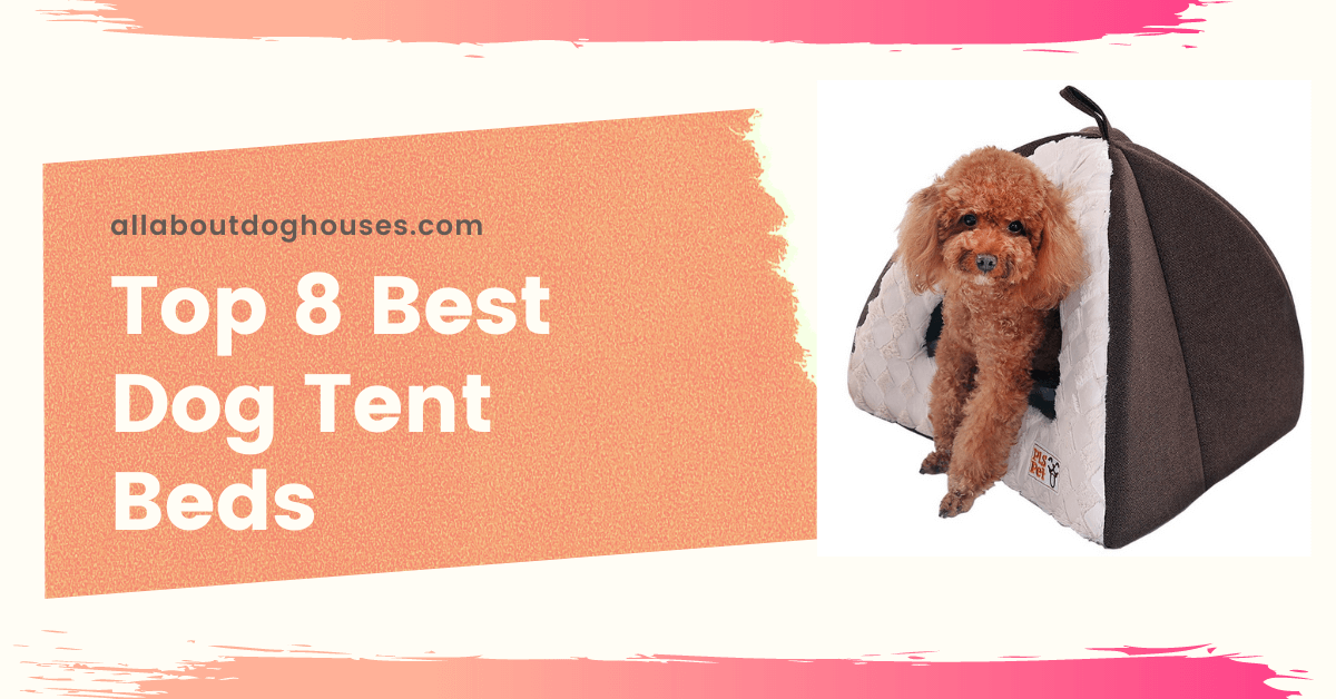 Best Dog Tent Beds