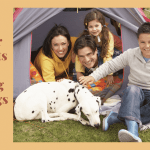 Best Outdoor Dog Tents