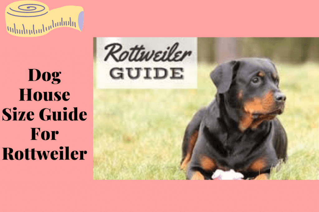 Dog House Size Guide For Rottweiler