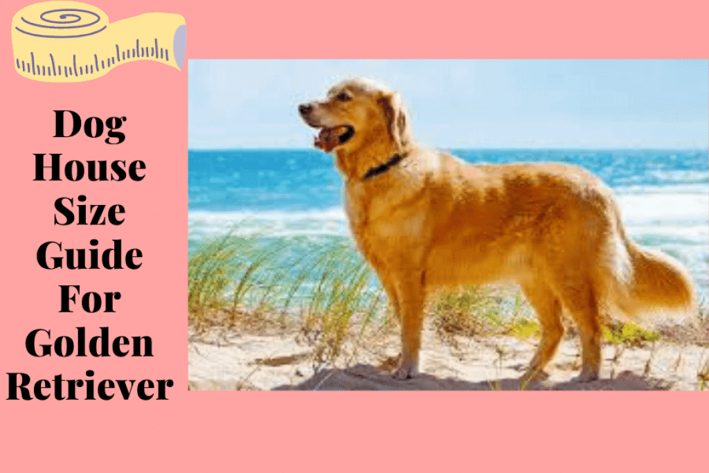 Dog House Size Guide For Golden Retriever