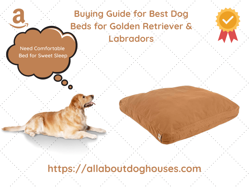 Best Dog Beds For Golden Retrievers And Lab Buying Guide