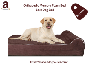 Orthopedic Memory Foam Bed